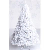 210 Cm Büyük Boy Beyaz Yılbaşı Çam Ağacı