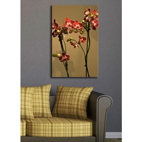 TabloModern Kırmızı Çiçekler Kanvas Tablo 45x70 cm