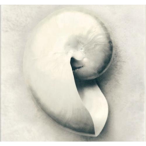 Fotocron Beyaz Tablo