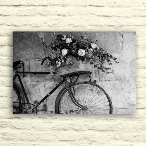Fotocron Sepetli Bisiklet Tablo 24X34 Cm
