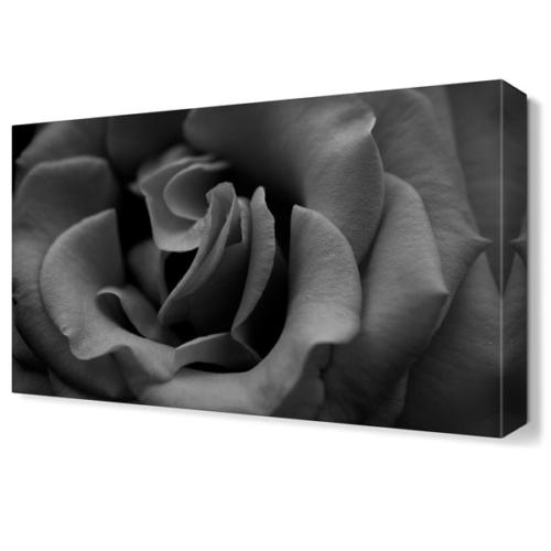 Dekor Sevgisi Karagül Tablosu 45x30 cm