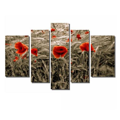 Dekor Sevgisi Kuruyan Gelincikler Tablosu 84x135 cm