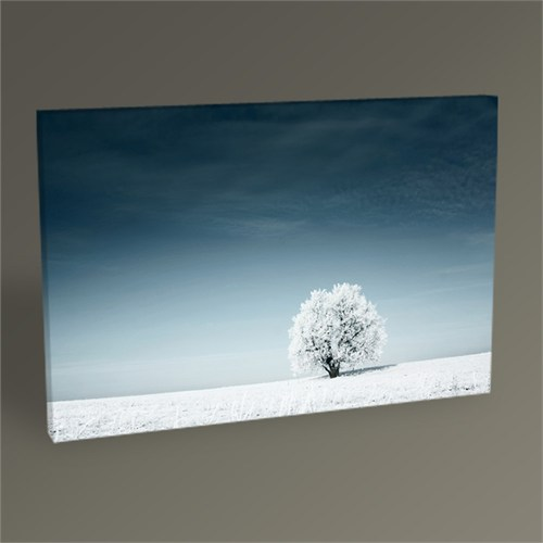 Tablo 360 Blue Sky And The Frozen Tree Tablo 45X30
