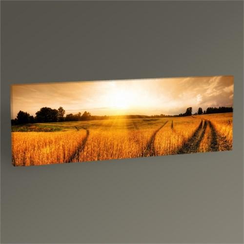 Tablo 360 Gün Batımı Buğday Tarlası Tablo 60X20