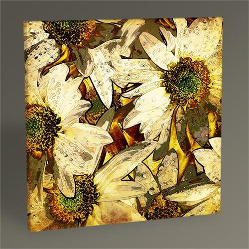 Tablo 360 Vintage Floral Iıı Tablo 30X30