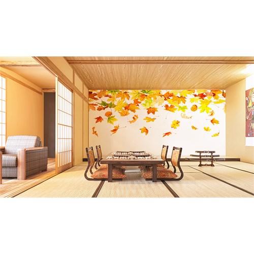 Iwall Resimli Dökülen Yapraklar Duvar Kağıdı 250X180