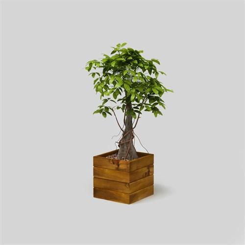Onlywood Flower Box Saksı Eskitme