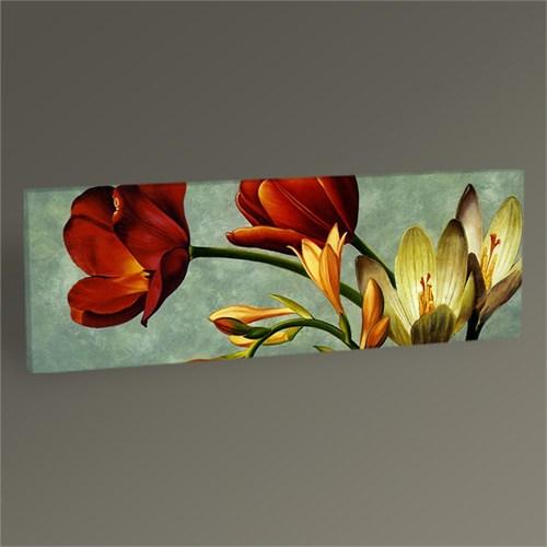 Tablo 360 Dekoratif Çiçekler Iı Tablo 60X20