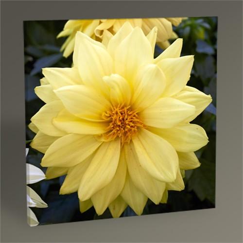 Tablo 360 Yellow Flower Tablo 30X30