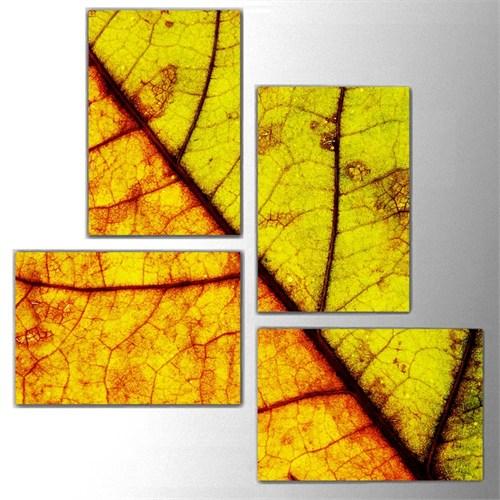 Tictac 4 Parça Kanvas Tablo - Renkli Yapraklar