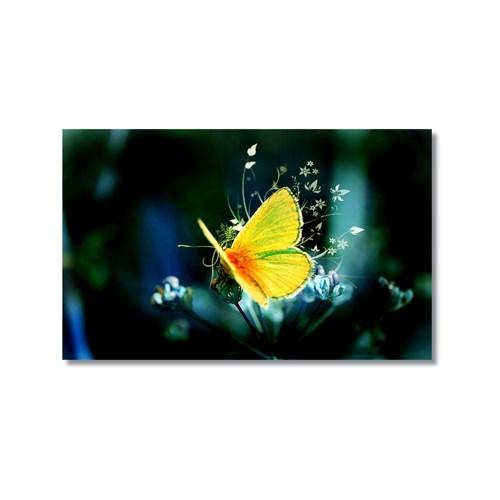 Tictac Sarı Kelebek 3 Kanvas Tablo - 60X90 Cm