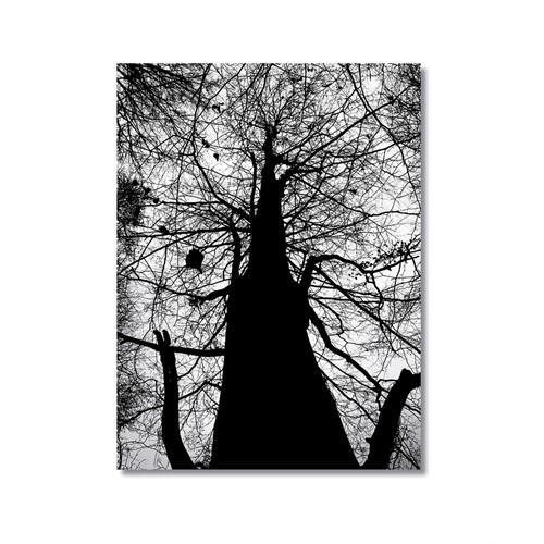 Tictac Uzun Ağaç Kanvas Tablo - 60X90 Cm