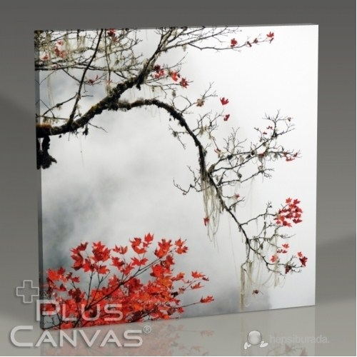 Pluscanvas - Sonbahar Tablo