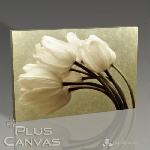 Pluscanvas - Oblique Tablo