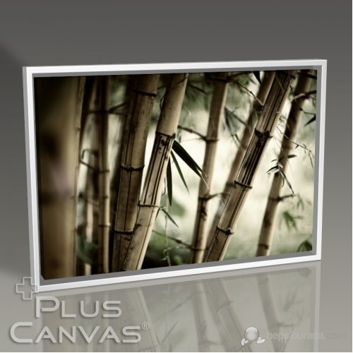 Pluscanvas - Bamboo Tablo
