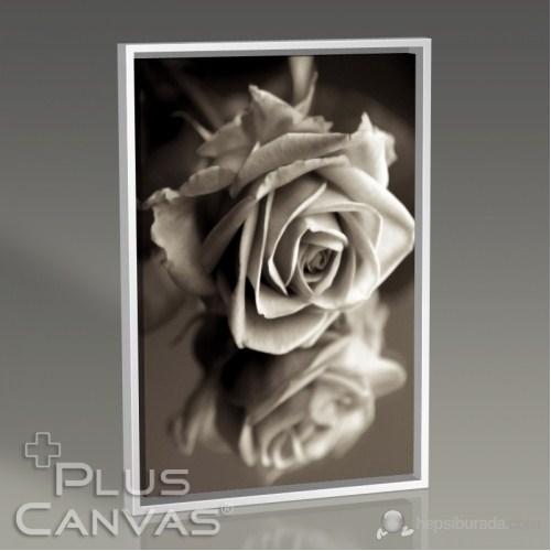 Pluscanvas - Sephia Flower Close-Up Tablo