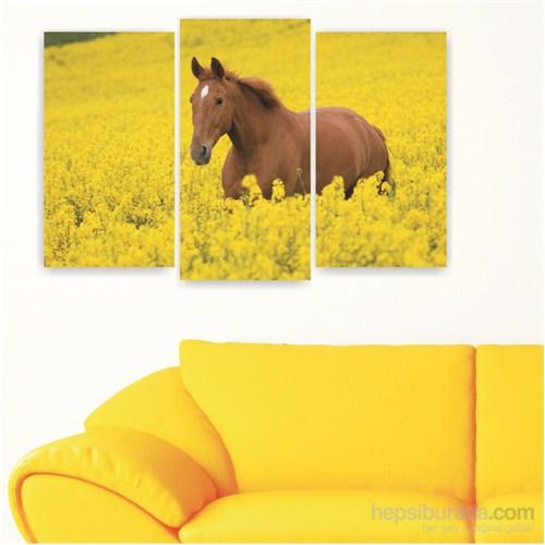 Dekoriza Sarı Çiçekler & At 3 Parçalı Kanvas Tablo 80X50cm