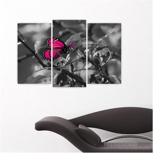 Dekoriza Siyah & Beyaz Kelebek 3 Parçalı Kanvas Tablo 80X50cm