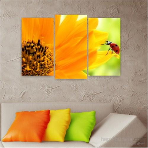 Dekoriza Uğur Böceği 3 Parçalı Kanvas Tablo 80X50cm