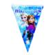 Tahtakale Toptancısı Flama İyiki Doğdun Yazılı Frozen Temalı