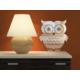 Dekorjinal Ay50 Owl Dekoratif Ayna