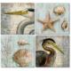 Fotocron Retro Birds 4'lü Tablo