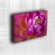 Doku Canvas Baskı Çiçek- CIGE562