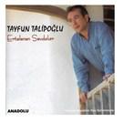 Tayfun Talipoğlu - Ertelenen Sevdalar