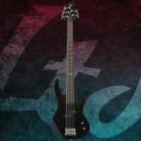 Esp Ltd B-15 Black 5 Telli Bass Gitar + Gigbag