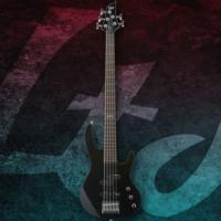 Esp Ltd B-55 Black Bas Gitar