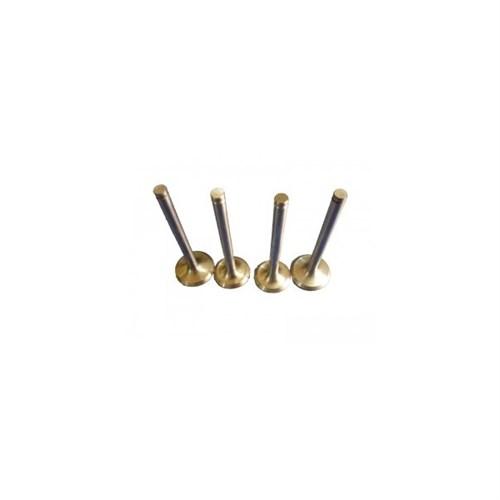 Gunes 1410-1411 Subap Takımı (Emme / Egsoz) Fıorıno-Doblo-Palıo-Albea-Punto 1,3 Multıjet 16V - 1,3Jtd 16V Astra-Corsa 1,3Cdtı 16V Suzukı Ignes-Wagon R+ Z13dt(1,3Ddıs 16V) Bıpper-Nemo 1,3Hdı 16V Olcu