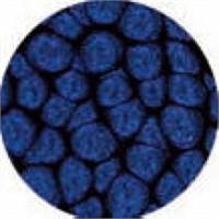 Pebeo Fantasy Prisme Efekt Boyası 36 Midnight Blue