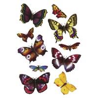 Herma Çocuk Etiketi Renkli Kelebekler