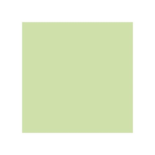 Stylefile Pale Green 670