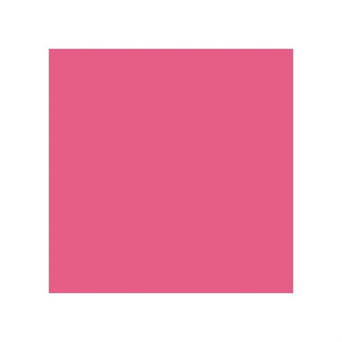 Stylefile Cherry Pink 356