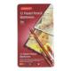 Derwent Pastel Pencil Skıntone 12'Li Teneke Kutu (Ten Renkleri İçerir) Dw2300563