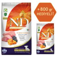 N&D Pumpkin Tahılsız Bal Kabaklı, Kuzu Etli Ve Yaban Mersinli Ufak Irk Yavru Köpek Maması 2.5Kg - 800 Gr