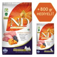 N&D Pumpkin Tahılsız Bal Kabaklı, Kuzu Etli Ve Yaban Mersinli Ufak Irk Yetişkin Köpek Maması 2.5Kg - 800 Gr