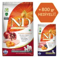 N&D Pumpkin Tahılsız Bal Kabaklı, Tavuk Etli Ve Narlı Orta Ve Büyük Irk Yetişkin Köpek Maması 2.5Kg - 800 Gr