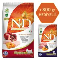 N&D Pumpkin Tahılsız Bal Kabaklı, Tavuk Etli Ve Narlı Ufak Irk Yetişkin Köpek Maması 2.5Kg - 800 Gr