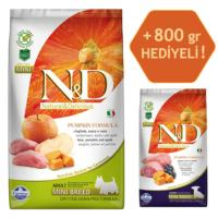 N&D Pumpkin Tahılsız Bal Kabaklı, Yaban Domuzu Etli Ve Elmalı Ufak Irk Yetişkin Köpek Maması 2.5Kg - 800 Gr
