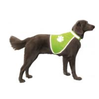 Nobby Fosforlu Ve Led Işıklı Köpek Güvenlik Yeleği Xs