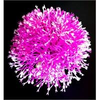 Top Şekilli Plastik Bitki 10Cm Kırmızı