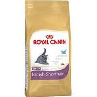 Royal Canin British Shorthair Yavru Kedi Maması 2 Kg