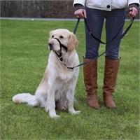 Trixie Uzman Köpek Eğitim Tasması Xl-Kısa 40Cm