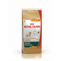 Royal Canin Bhn Golden Retr Junıor 12+2 Kg