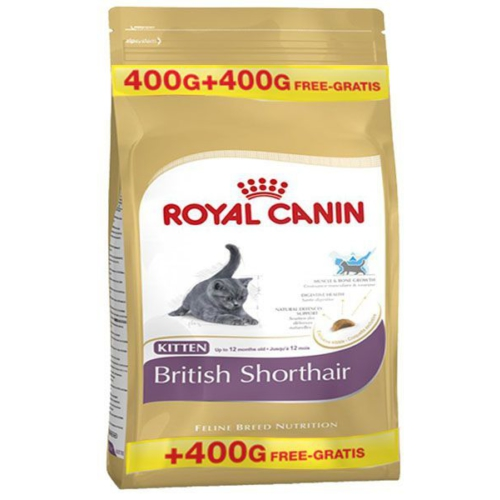 royal canin british shorthair i in zel yavru kedi mamasi fiyat. Black Bedroom Furniture Sets. Home Design Ideas