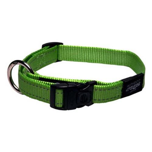 Rogz Köpek Boyun Tasması Yeşil Reflektörlü 25Mm-Xl
