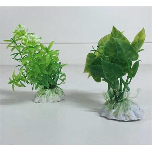Anka Akvaryum Ve Fanus İçin Küçük Plastik Bitki Pb019