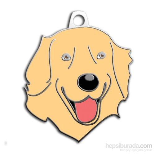 Dalis Pet Tag - Golden Retrıever Köpek Künyesi (İsimlik)